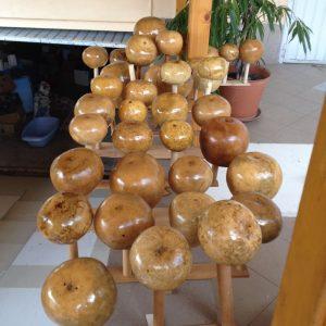 Varnished cabaca gourd for berimbau instrument directly from the berimbau maker